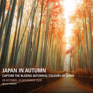 Japan in Autumn Photography Tour 2020