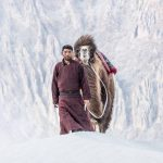 Square Camel and Shepard in the Nubra Valley Ladhak India Photography Tour by Ignacio Palacios